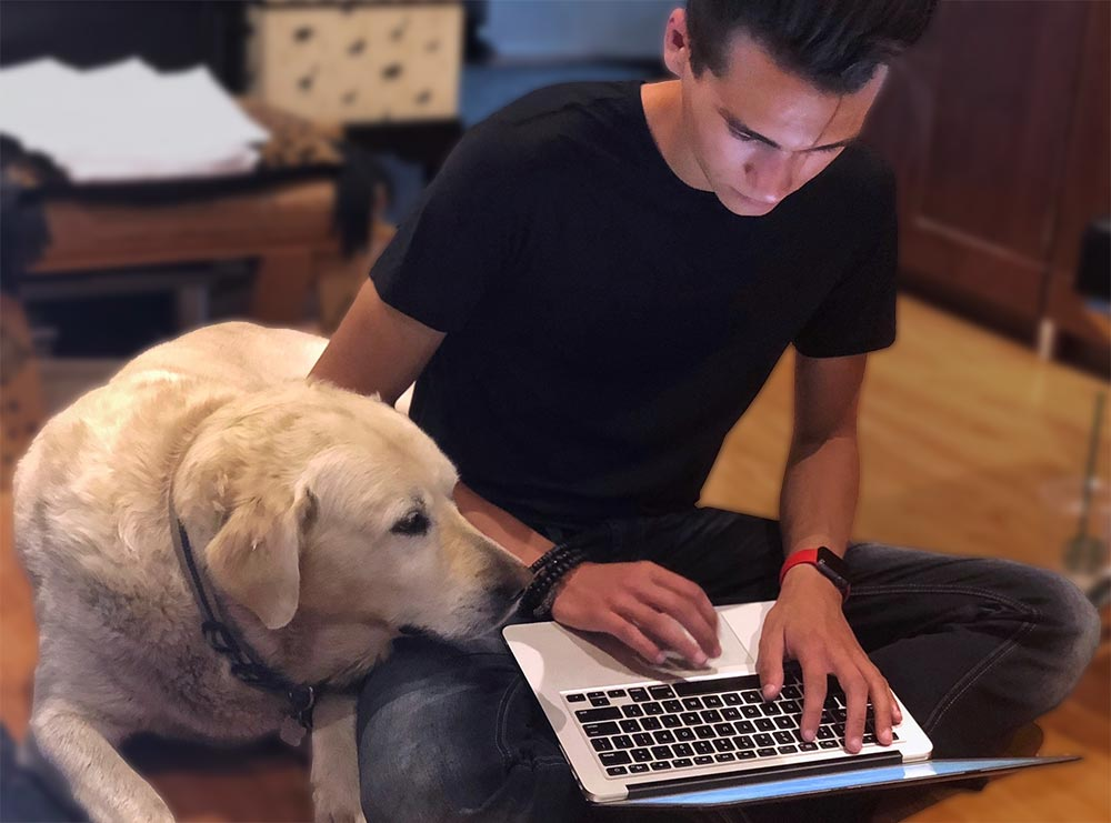 Designer working on a laptop with a dog watching the screen.
