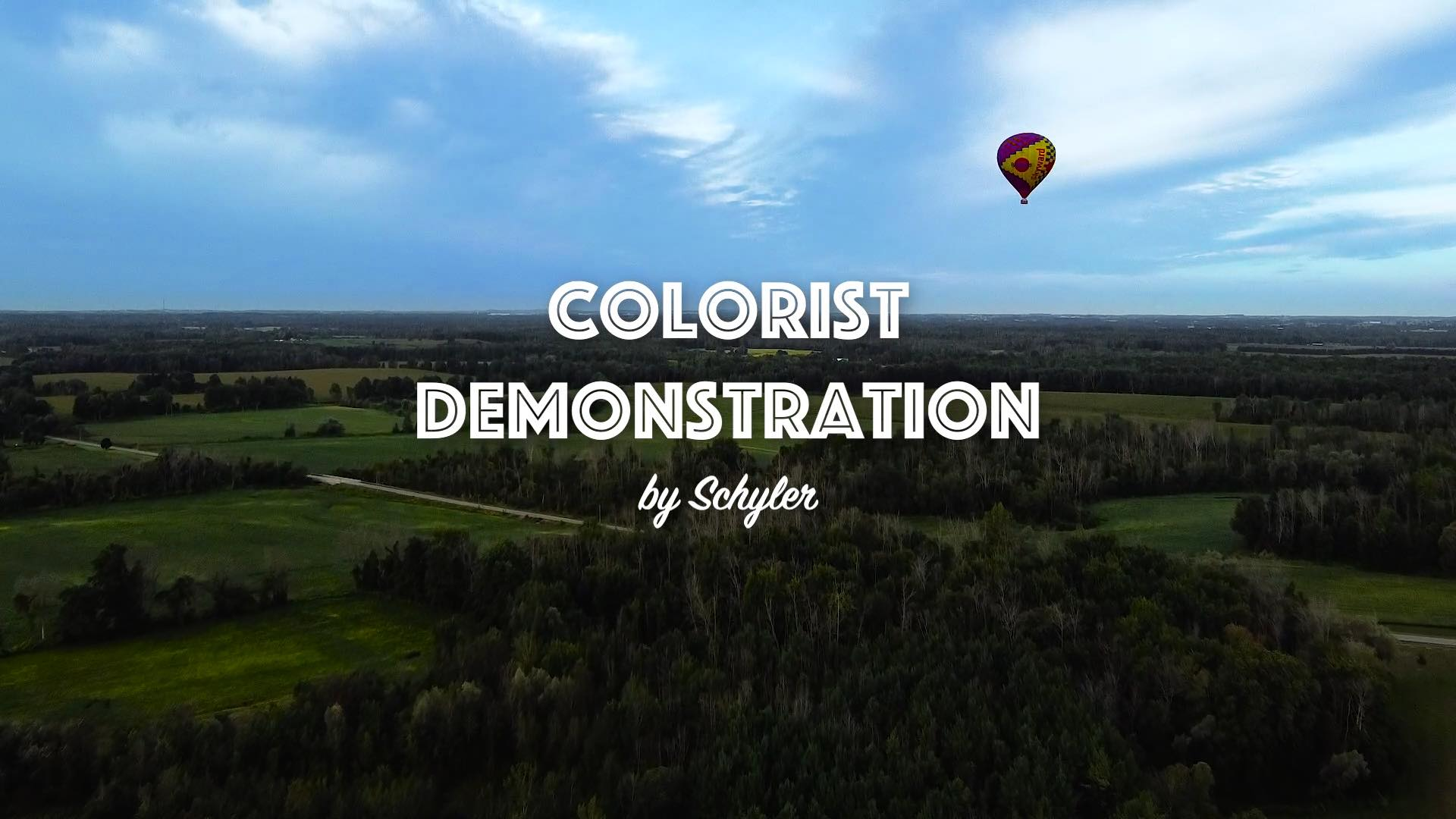 Still of the colorist demo video made by Schyler.